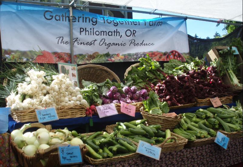 portland farmers market 06-15-13