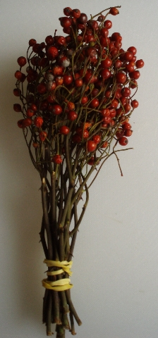 bunch of rose hips