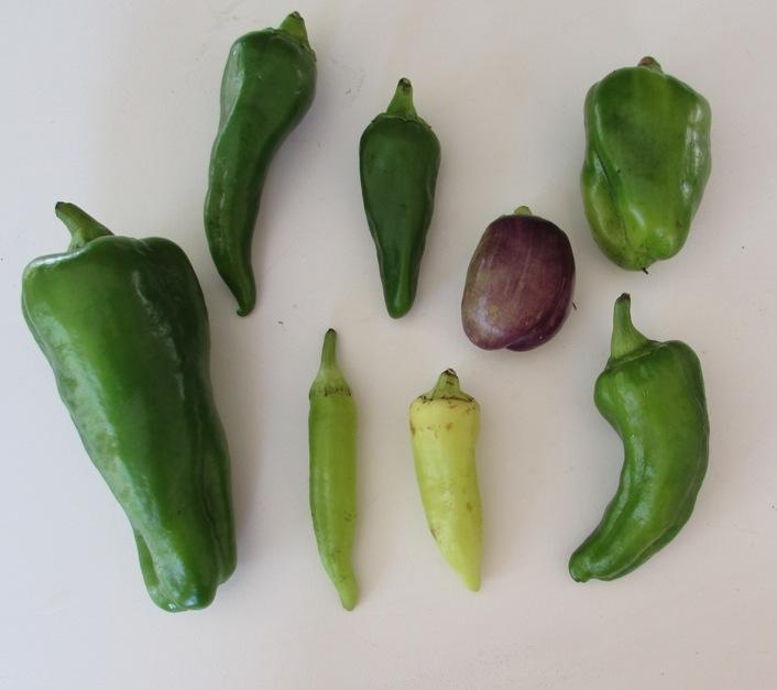 10-23-15 peppers.jpg